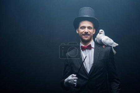Photo pour Colombe assise sur l'épaule d'un magicien gai en chapeau avec baguette dans une pièce sombre avec de la fumée - image libre de droit