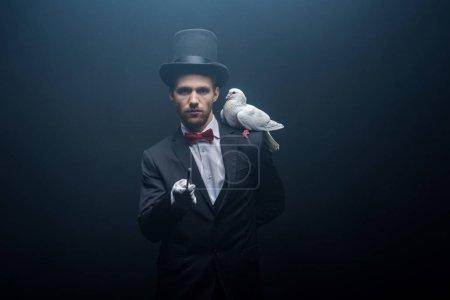 Photo pour Colombe assise sur l'épaule d'un jeune magicien en chapeau avec baguette dans une pièce sombre avec de la fumée - image libre de droit