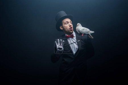 Photo pour Magicien excité avec bouche ouverte montrant tour avec colombe et baguette dans la pièce sombre avec de la fumée - image libre de droit
