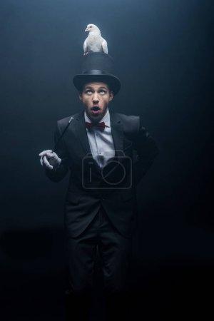 Photo pour Magicien surpris dans un chapeau avec colombe et baguette dans une pièce sombre avec fumée - image libre de droit