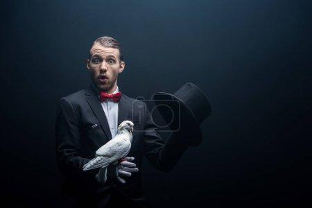 Photo pour Magicien choqué montrant tour avec colombe et chapeau dans la pièce sombre avec de la fumée - image libre de droit