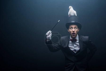 Photo pour Magicien émotionnel dans le chapeau montrant tour avec colombe et baguette dans la pièce sombre avec de la fumée - image libre de droit
