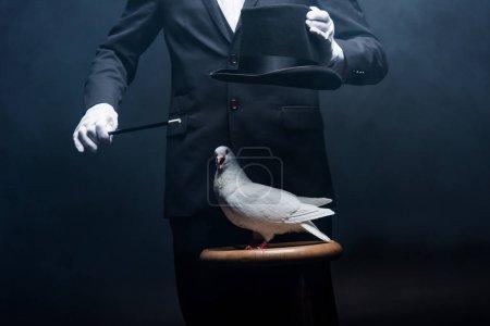 Photo pour Vue recadrée du magicien montrant tour avec colombe, baguette et chapeau dans une pièce sombre avec de la fumée - image libre de droit