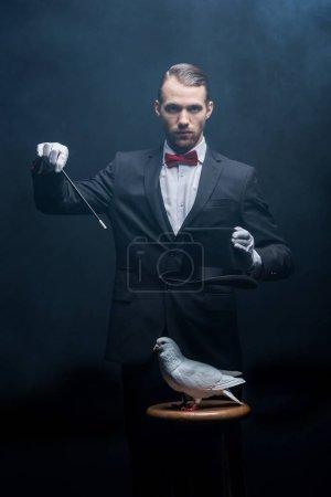 Photo pour Magicien montrant tour avec colombe, baguette et chapeau dans une pièce sombre avec de la fumée - image libre de droit