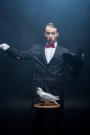 Photo pour Magicien choqué montrant tour avec colombe, baguette et chapeau dans la pièce sombre avec de la fumée - image libre de droit