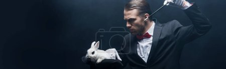 Photo pour Photo panoramique d'un jeune magicien concentré en costume montrant un truc avec une baguette et un lapin blanc en chapeau, chambre noire avec fumée - image libre de droit