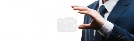 Photo for Panoramic shot of businessman in suit gesturing isolated on white - Royalty Free Image
