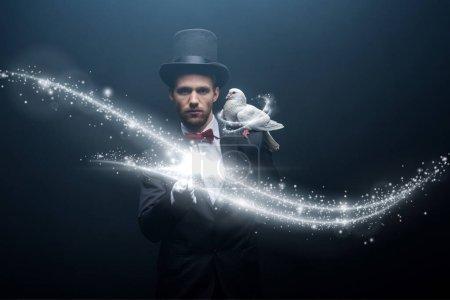 Photo pour Colombe assise sur l'épaule du jeune magicien en chapeau avec baguette dans une pièce sombre avec fumée et illustration lumineuse - image libre de droit