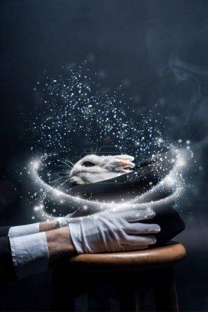 Photo pour Vue partielle du magicien en gants blancs tenant le chapeau avec le lapin, dans la pièce sombre avec la fumée et l'illustration lumineuse - image libre de droit