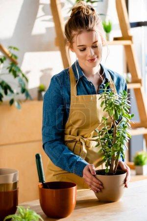 Photo pour Joyeux jeune femme tenant une plante verte près du pot de fleurs - image libre de droit
