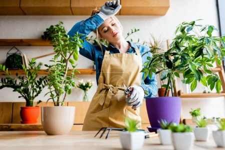 Photo for Selective focus of tired young woman in gloves touching forehead while holding gardening scissors near plants - Royalty Free Image