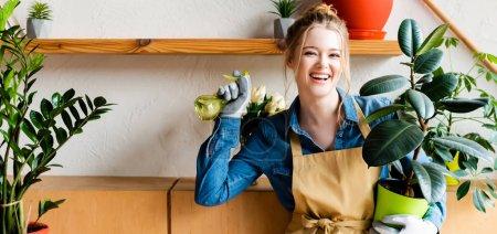 Photo pour Photo panoramique d'une jeune femme heureuse tenant un flacon pulvérisateur et une plante verte - image libre de droit