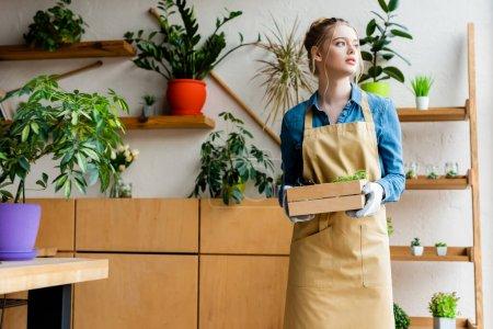 Photo pour Belle femme en gants tenant une boîte en bois avec des plantes vertes et regardant loin - image libre de droit