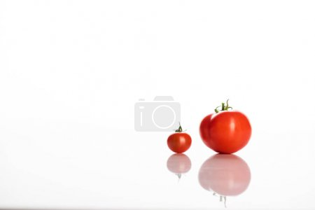 Photo for Red tomatoes transformation phases on white with copy space - Royalty Free Image