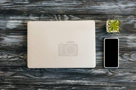 Photo pour Vue de dessus de l'ordinateur portable, smartphone avec écran blanc et succulent sur la surface en bois sombre - image libre de droit