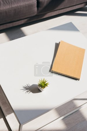 Photo for Notepad and house plant on table in sunlight - Royalty Free Image
