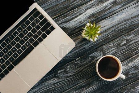 Photo pour Vue de dessus de l'ordinateur portable, plante de maison et tasse à café sur la surface en bois sombre - image libre de droit