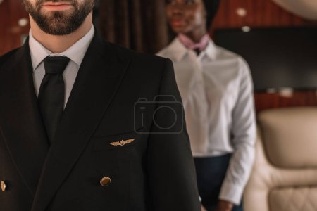 cropped view of pilot and african american stewardess in private plane