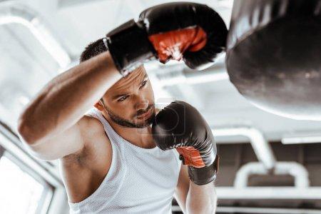 Photo pour Focalisation sélective du beau sportif en gants de boxe entraînement avec un sac à poinçonner - image libre de droit