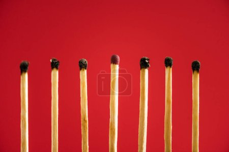 Photo for Unburned match among another isolated on red - Royalty Free Image