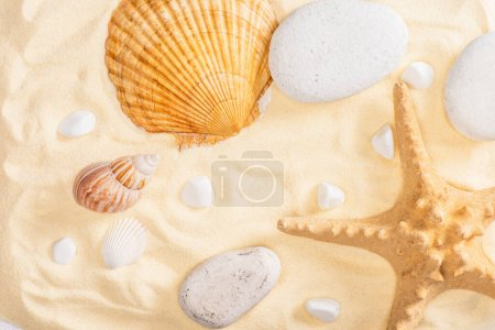 Photo pour Vue de dessus des étoiles de mer, des cailloux et des coquillages sur sable - image libre de droit