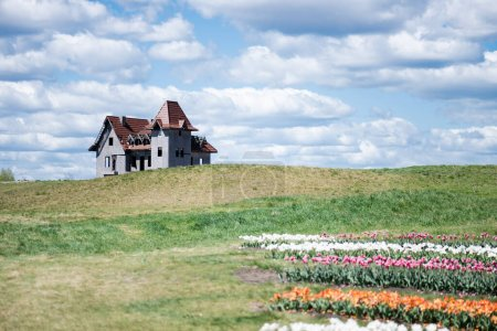 Photo for House on hill near colorful tulips field and blue sky with clouds - Royalty Free Image
