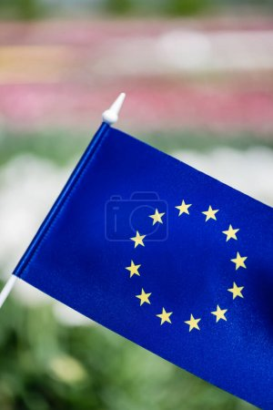 Photo for Selective focus of blue flag of Europe with stars - Royalty Free Image
