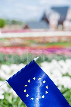 Photo for Selective focus of flag of Europe near colorful tulips field - Royalty Free Image