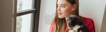 Photo pour Orientation panoramique de la fille regardant la fenêtre près du chat mignon - image libre de droit