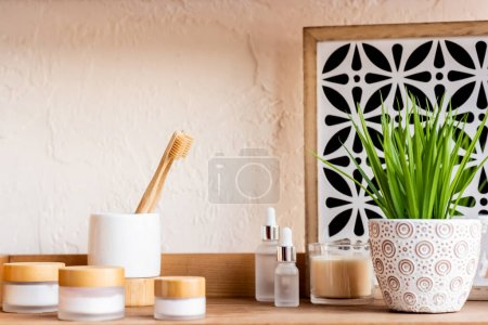 toothbrushes, containers and bottles near candle and green plant on shelf