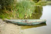 Old wooden boat on the shore of a small pond.