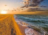 sandy sea beach at the sunset