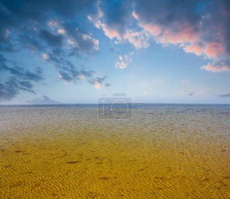 beautiful shallow summer sea gulf