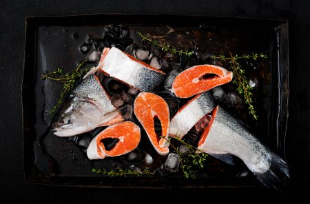 pieces of fresh raw salmon with ice