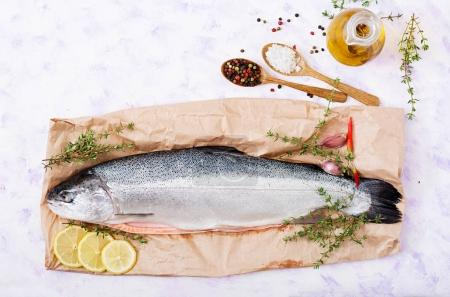 Fresh raw salmon with spices in spoons
