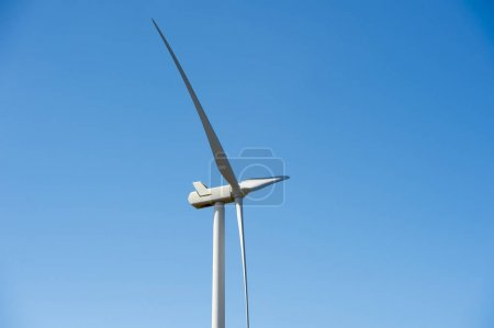 Wind energy farm turbine