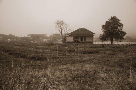 Champs cultivés et ferme dans une journée brumeuse
