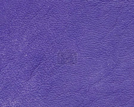 violet leather texture closeup as background