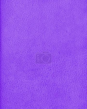 violet leather texture as background for design-works