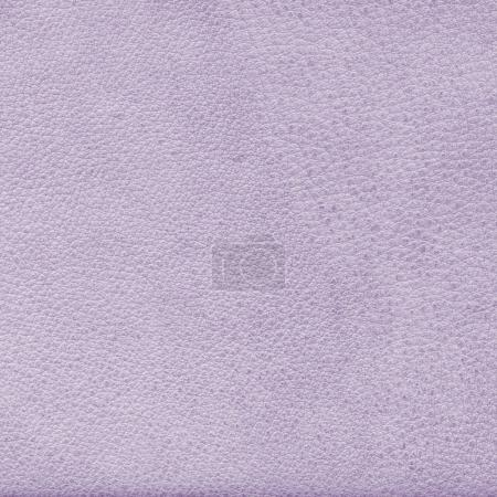 old pale violet leather texture as background