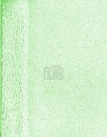 pale green artificial leather texture