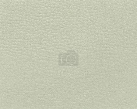 light gray-green artificial leather texture as background