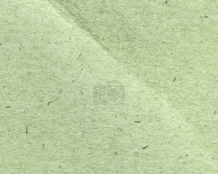 green cardboard texture, useful for background
