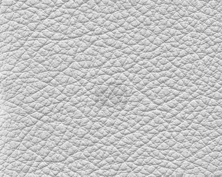 Photo for White leather texture closeup.Useful as background - Royalty Free Image