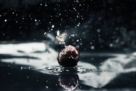 Photo for Ripe cherry falling in water with splash isolated on black - Royalty Free Image
