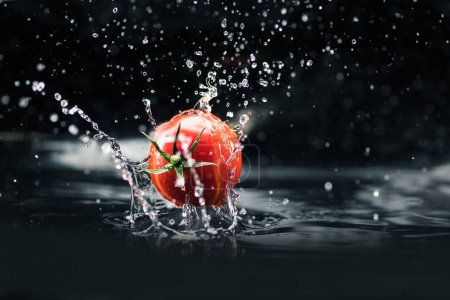 fresh tomato falling in water