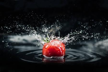 Photo pour Tomate fraîche tombant dans l'eau avec splash isolé sur fond noir - image libre de droit