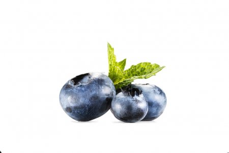 pile of blueberries with mint leaves