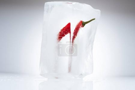 chili pepper in melting ice