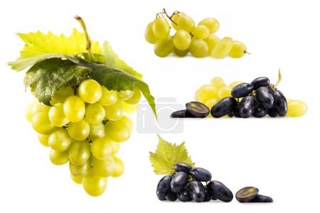 collage with ripe grapes